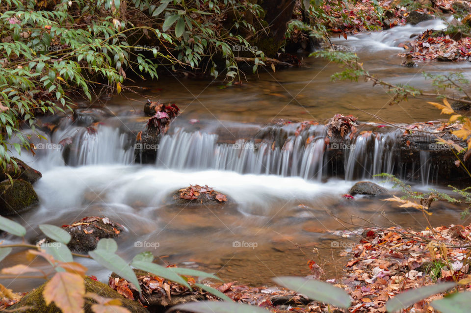 Mills River. Mills River in North Carolina.