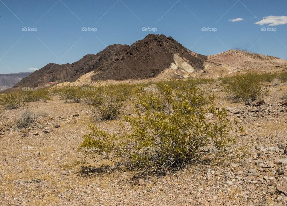 Red Rock Canyon , Mojave Desert near Las Vegas , Nevada.