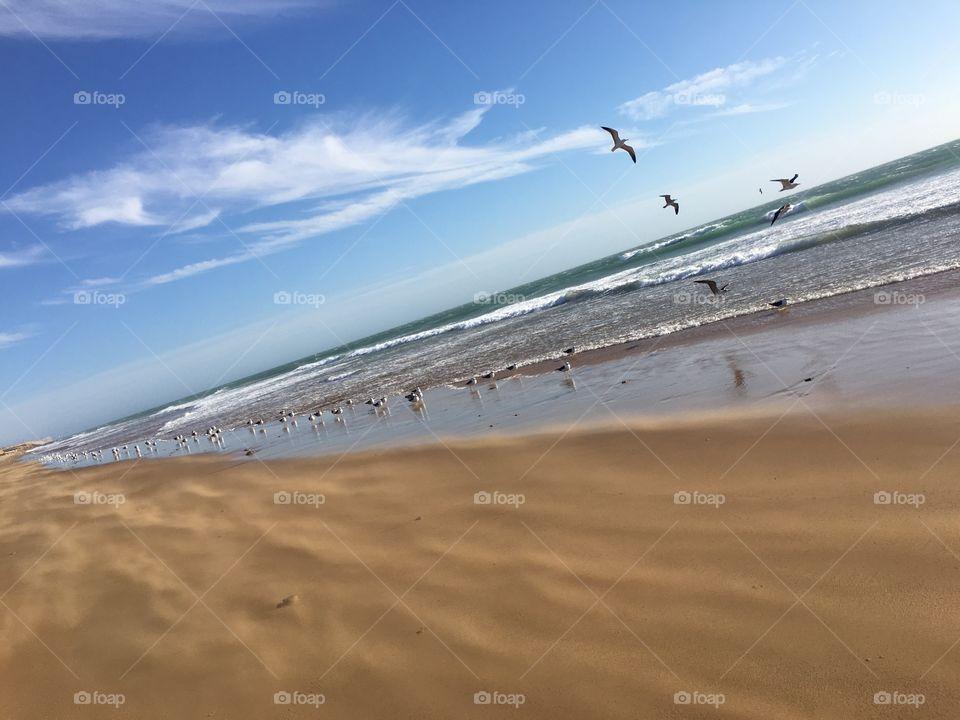 Sky Wind  sand  sea
