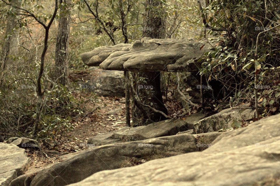 A very odd rock formation on a trail in Fall Creek Falls, TN
