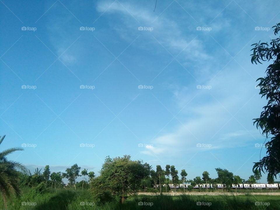 landscape 2017/10/03  004  #আমার_চোখে #আমার_গ্রাম #nature #landscape #sky #clouds #horizon