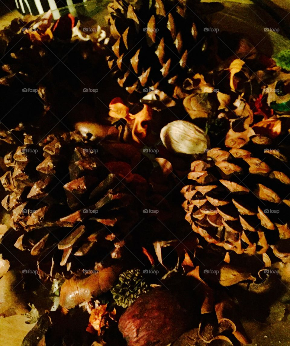 Pine cones and potpourri