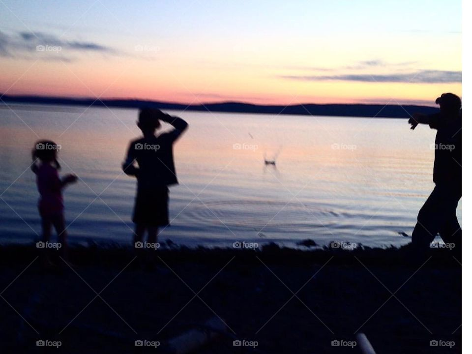 Skipping rocks in the lake.
