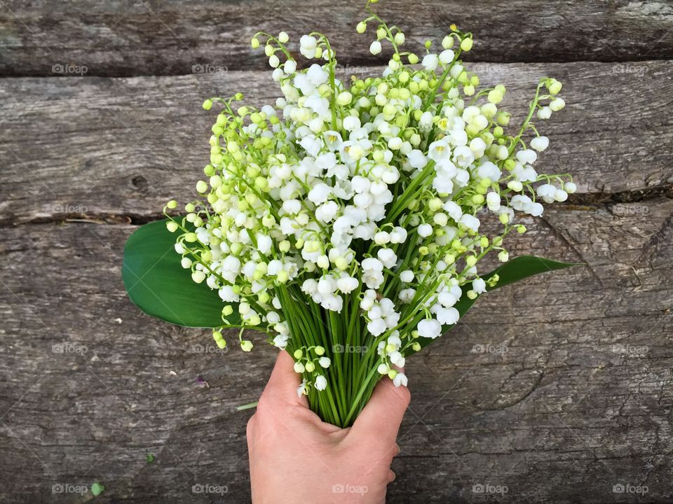 Woman's hand holding bouquet of lilies of the valley
