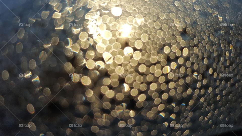The sun behind dew