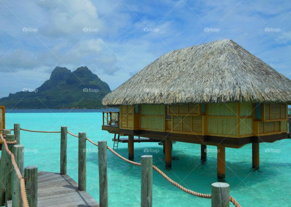 hut coral tropical fantasy by martini