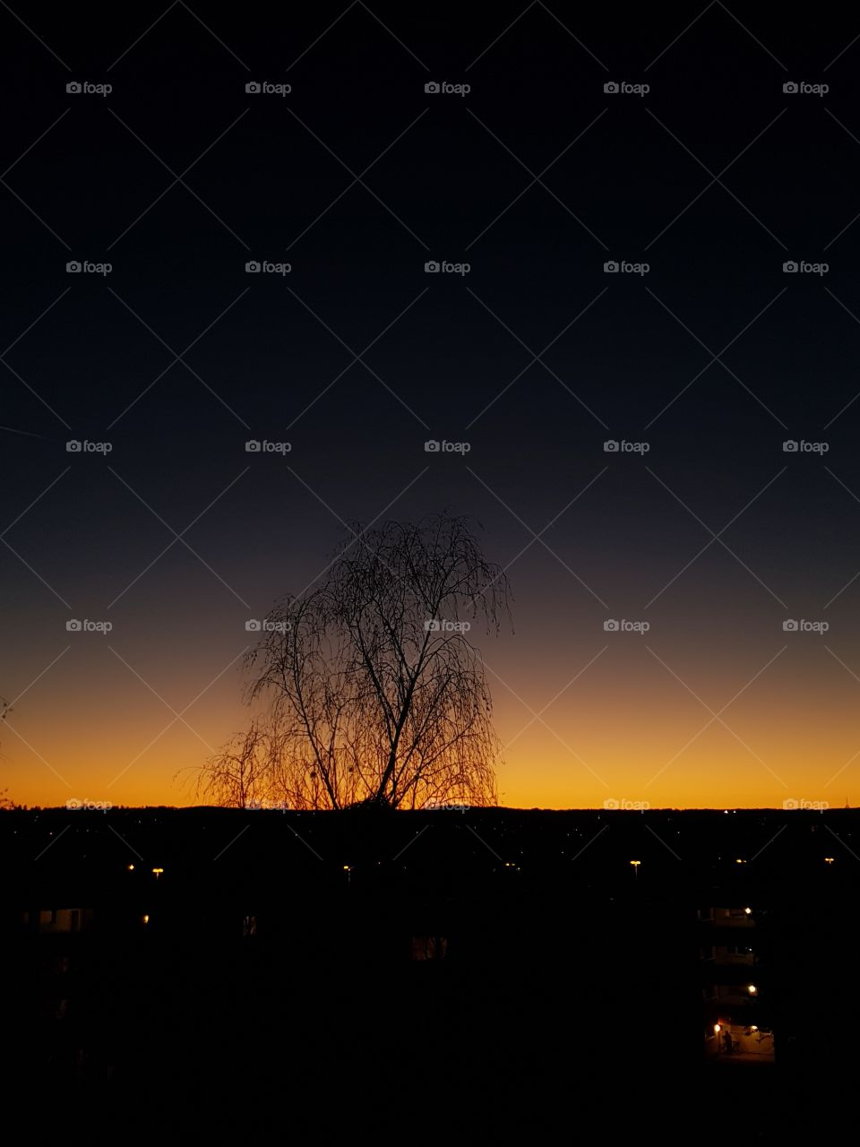 Tannenbusch Bonn Sonnenuntergang