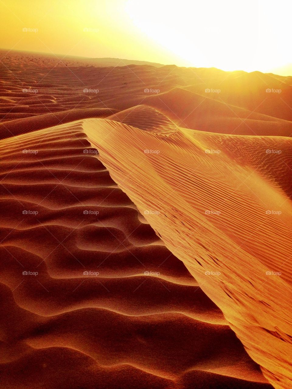 Sunset over sand dunes