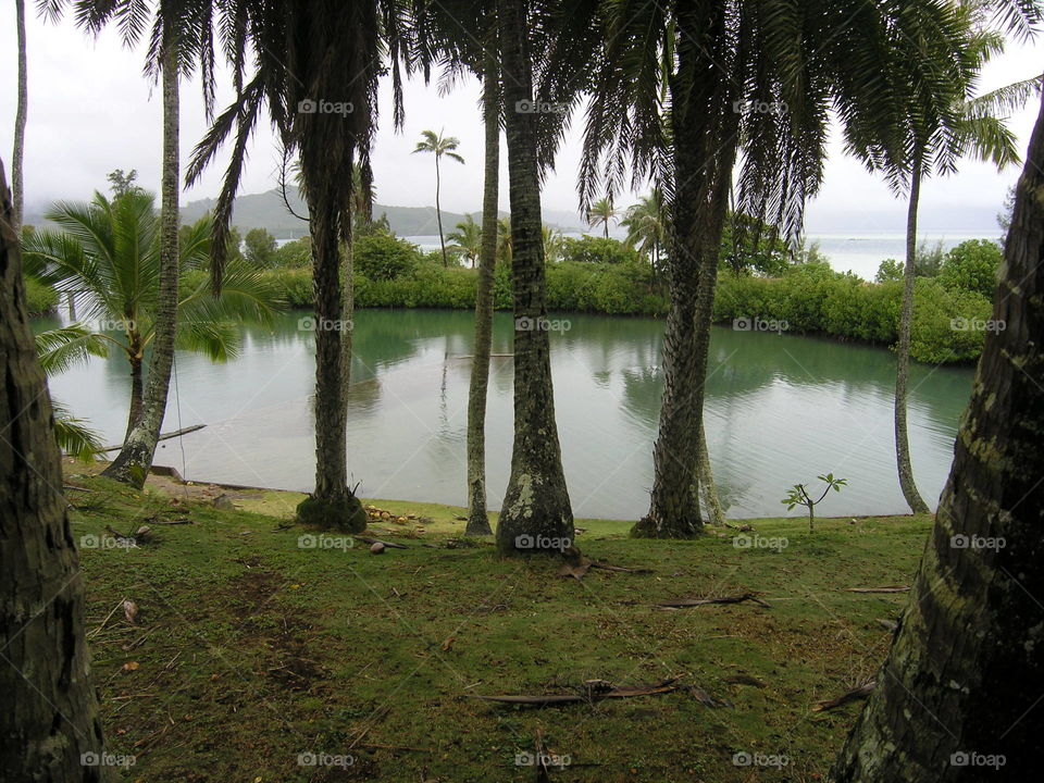 "small bay on Coconut Island, where the show, ""Gilligan's Island"" was filmed"