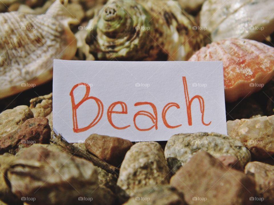 Beach text with seashells