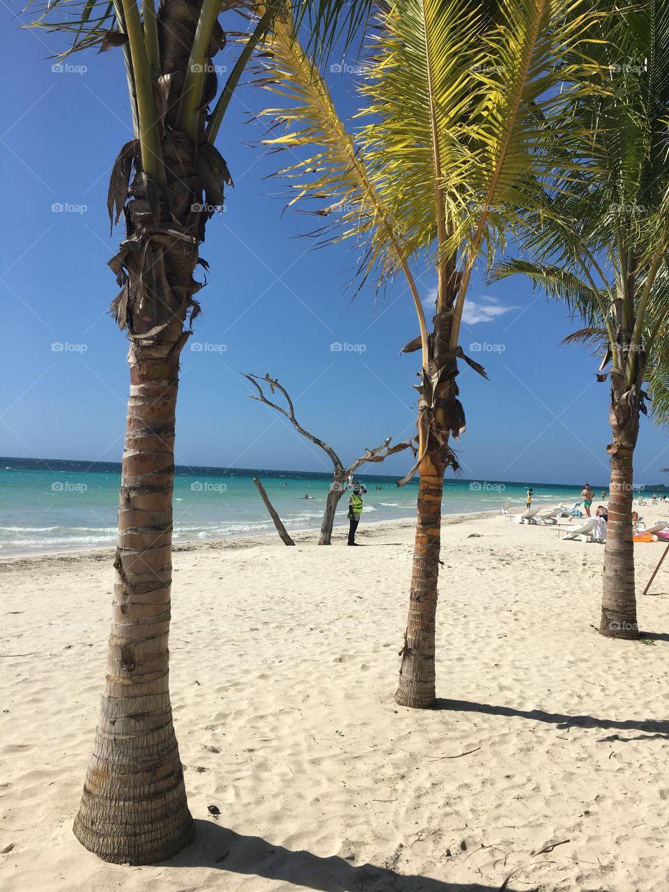 7 miles Beach in Jamaica