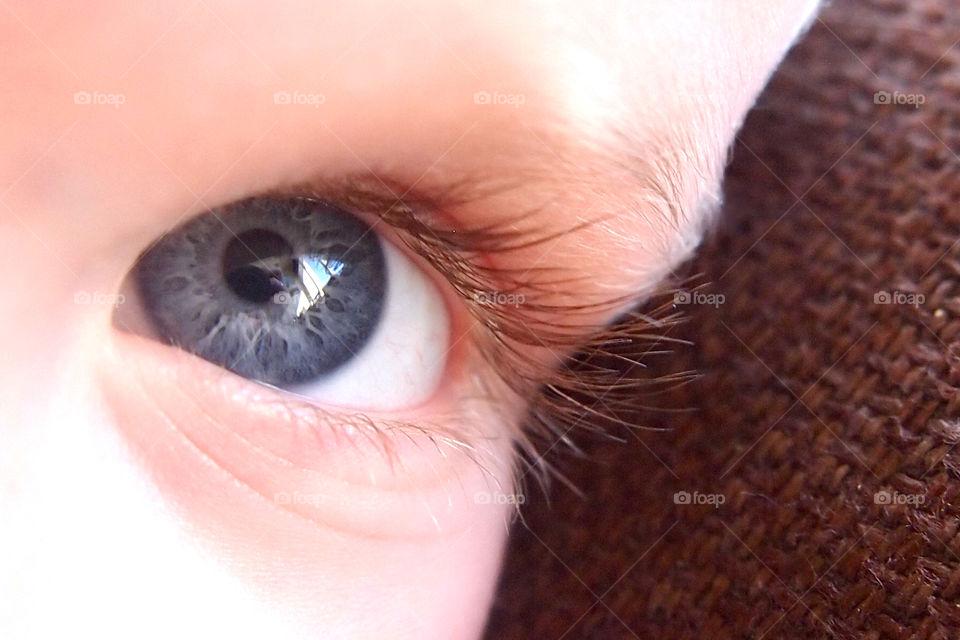 Close-up of baby eye