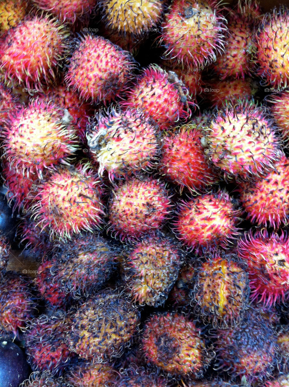 Spiky Lychee fruit at an American midwestern market.