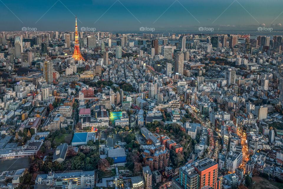 Tokyo tower rising above vibrant Tokyo city