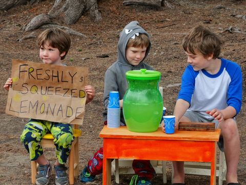 Lemonade Stand. Young Brothers Selling Homemade Lemonade In The Summer