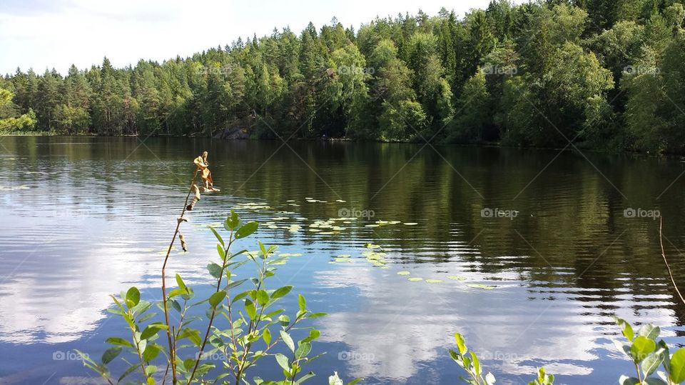 A lake in the forrest.