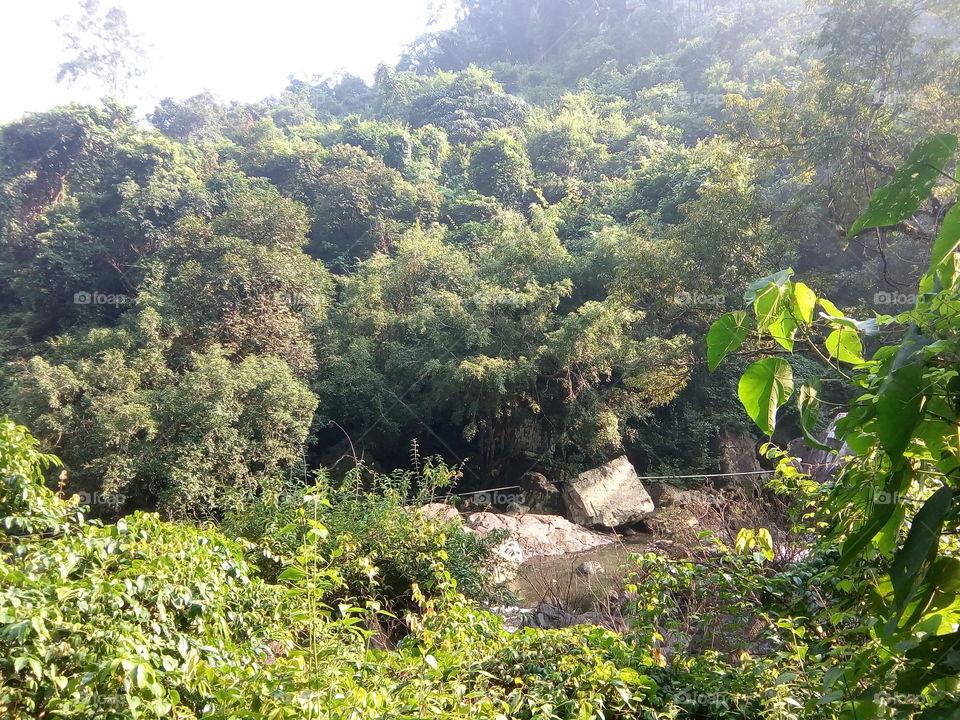 Nature 2017-11-04  015  #আমার_চোখে #আমার_গ্রাম #nature  #devkunda